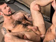 With fervent kissing, bearded studs Chris Harder and Damien Michaels explore all the time other's bodies. Chris gets things going by sucking on Damien's fat cock. Their lean, ripped torsos ripple below a thick coating of hair: Chris' is ebony brown, and D